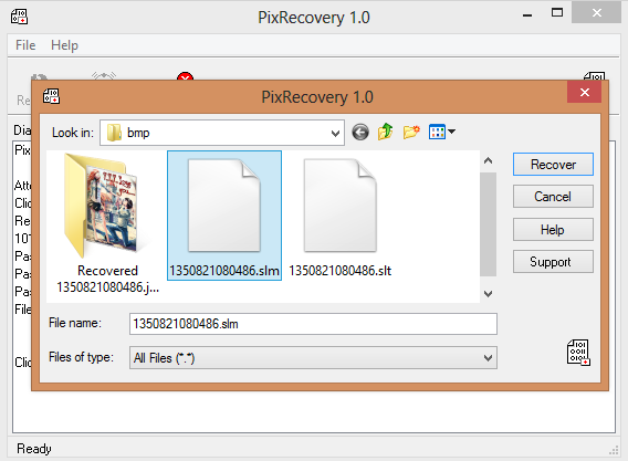 Open Pix Recovery Files 1